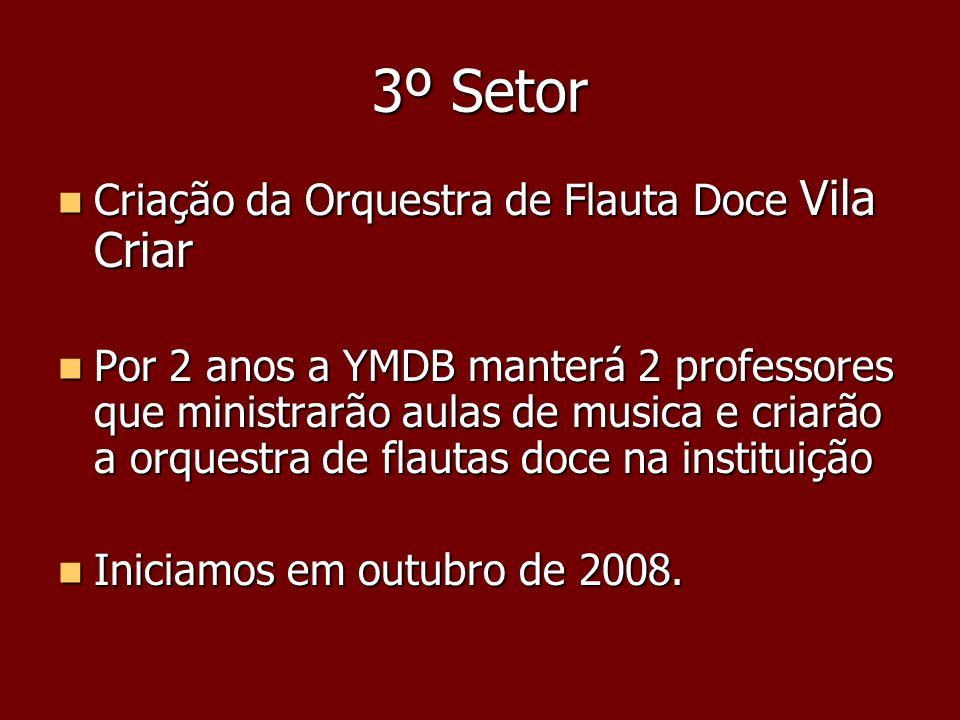 3º Setor Criação da Orquestra de Flauta Doce Vila Criar
