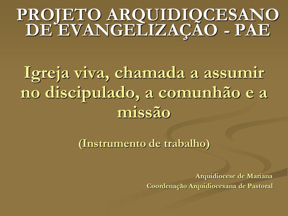 PROJETO ARQUIDIOCESANO DE EVANGELIZAÇÃO - PAE