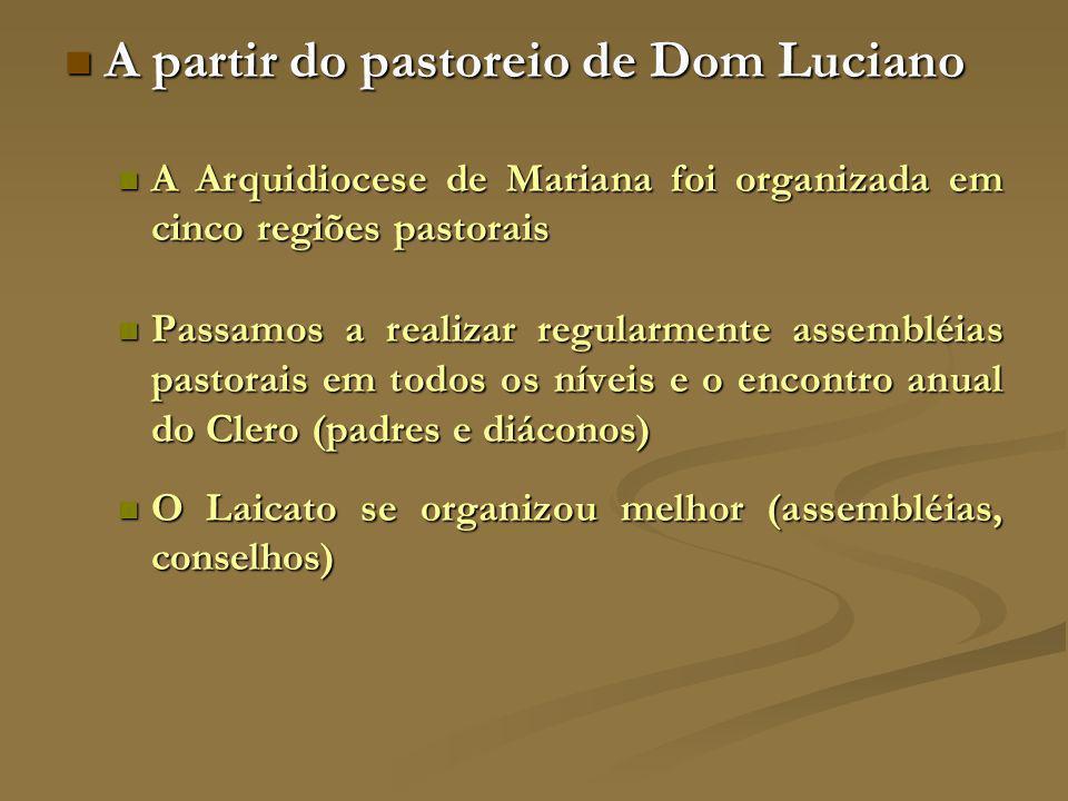 A partir do pastoreio de Dom Luciano