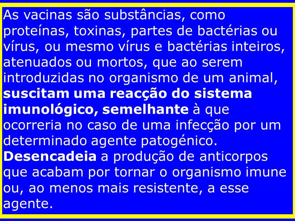 As vacinas são substâncias, como proteínas, toxinas, partes de bactérias ou vírus, ou mesmo vírus e bactérias inteiros, atenuados ou mortos, que ao serem introduzidas no organismo de um animal, suscitam uma reacção do sistema imunológico, semelhante à que ocorreria no caso de uma infecção por um determinado agente patogénico.