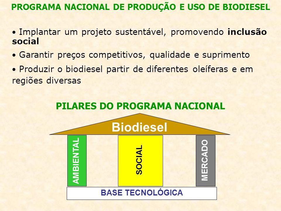 Biodiesel PILARES DO PROGRAMA NACIONAL