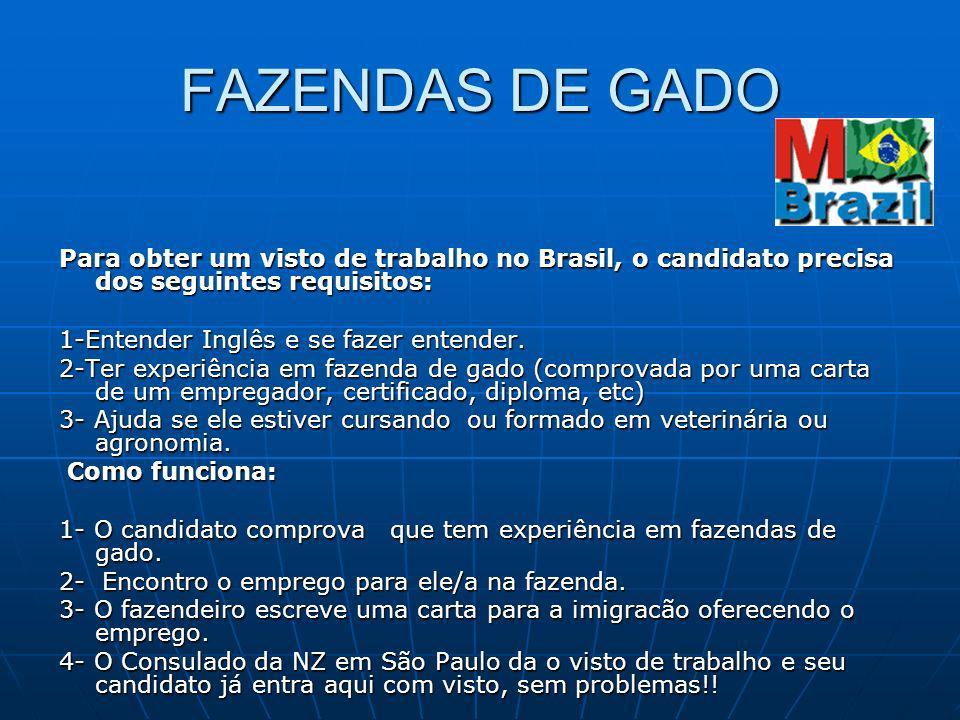 FAZENDAS DE GADO Para obter um visto de trabalho no Brasil, o candidato precisa dos seguintes requisitos: