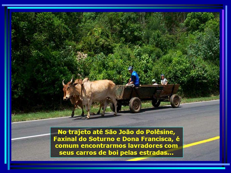 P0010180 - S. J. POLÊSINE - CARRO DE BOI-650