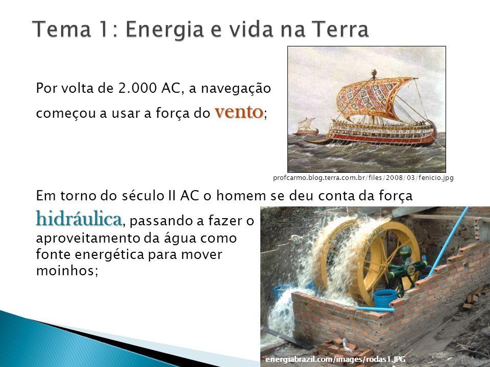 Tema 1: Energia e vida na Terra