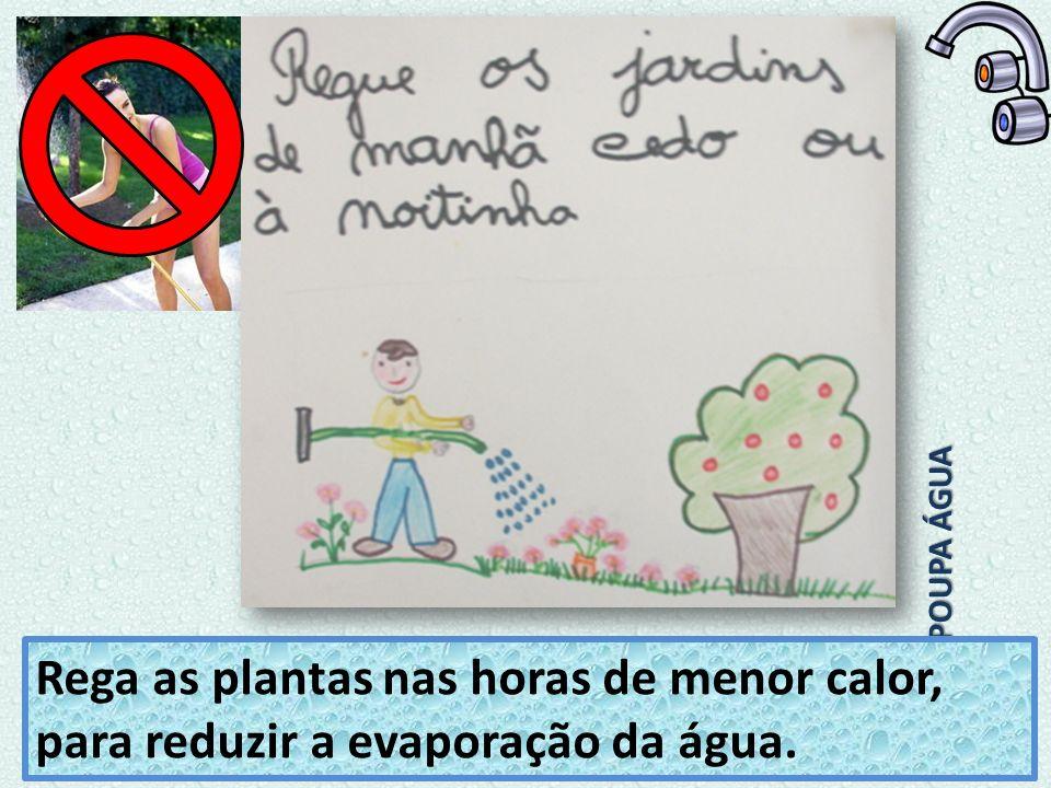 POUPA ÁGUA Rega as plantas nas horas de menor calor, para reduzir a evaporação da água.