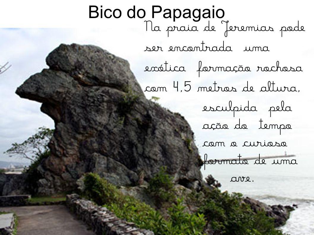 Bico do Papagaio Na praia de Jeremias pode ser encontrada uma exótica formação rochosa com 4,5 metros de altura,