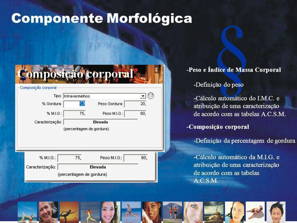 Componente Morfológica