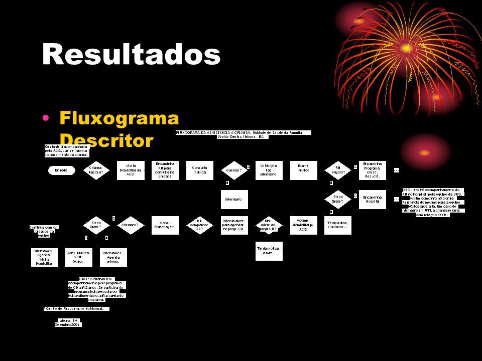 Resultados Fluxograma Descritor