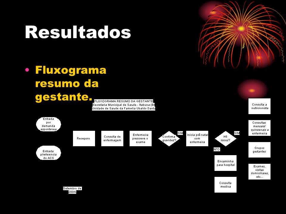 Resultados Fluxograma resumo da gestante.