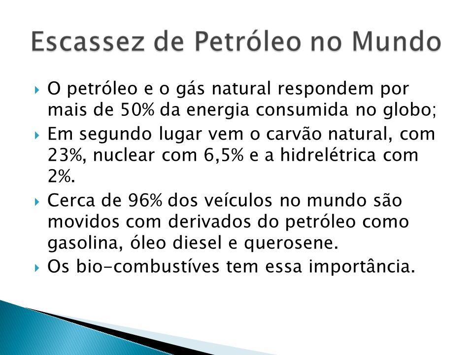 O petróleo e o gás natural respondem por mais de 50% da energia consumida no globo;