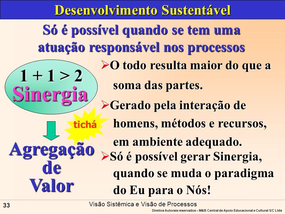 Sinergia Agregação de Valor 1 + 1 > 2 Desenvolvimento Sustentável