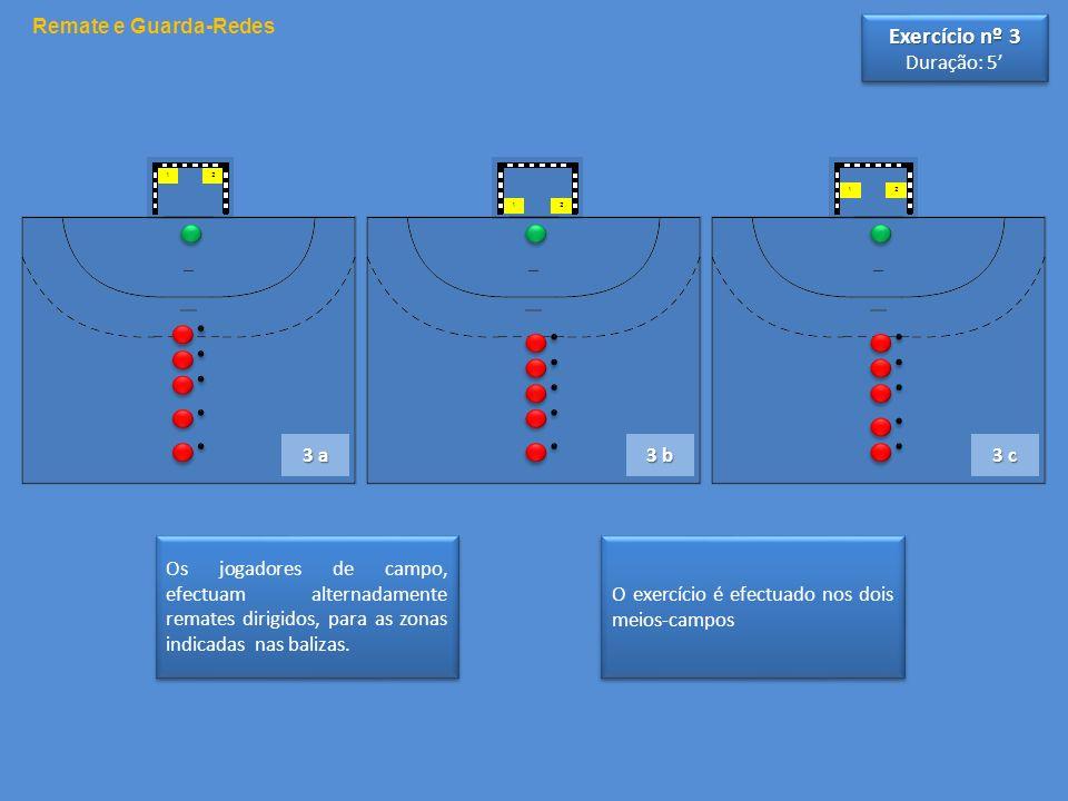 Exercício nº 3 Remate e Guarda-Redes Duração: 5' 3 a 3 b 3 c