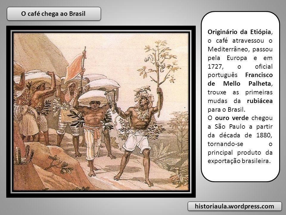O café chega ao Brasil