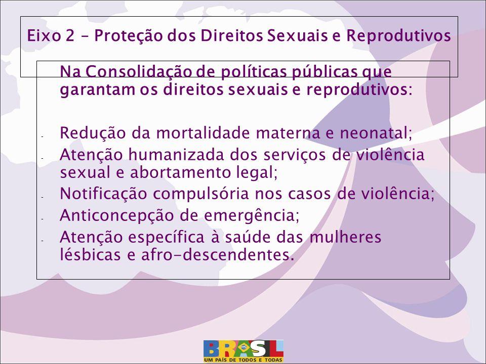 Eixo 2 – Proteção dos Direitos Sexuais e Reprodutivos