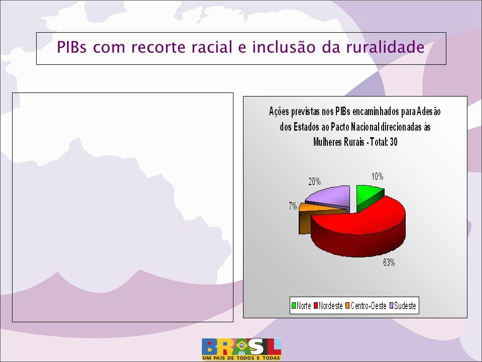 PIBs com recorte racial e inclusão da ruralidade