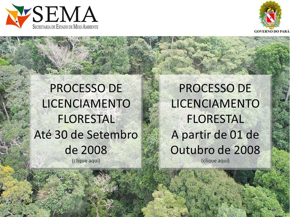 PROCESSO DE LICENCIAMENTO FLORESTAL