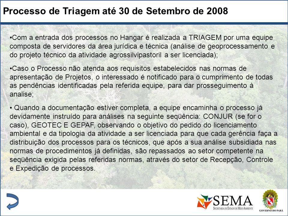 Processo de Triagem até 30 de Setembro de 2008