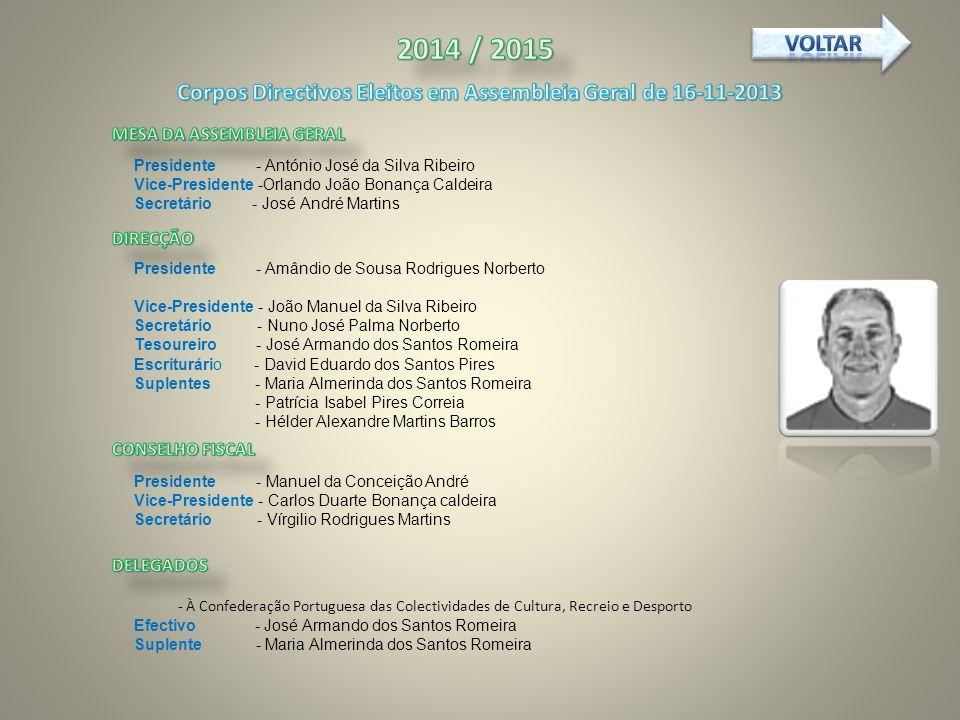 Corpos Directivos Eleitos em Assembleia Geral de 16-11-2013