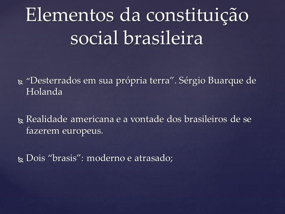 Elementos da constituição social brasileira