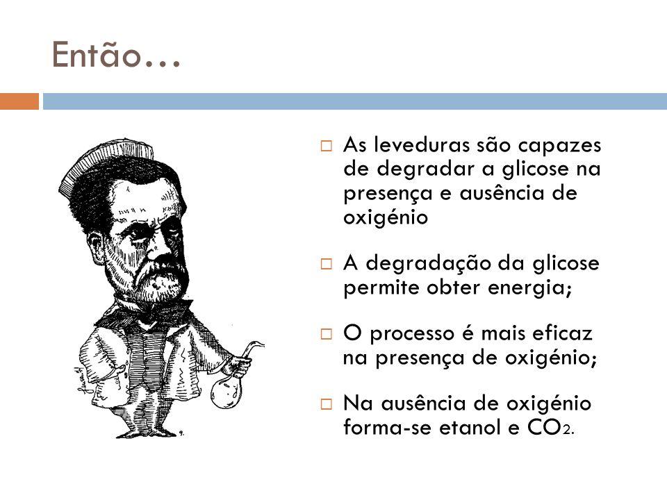 Então… As leveduras são capazes de degradar a glicose na presença e ausência de oxigénio. A degradação da glicose permite obter energia;