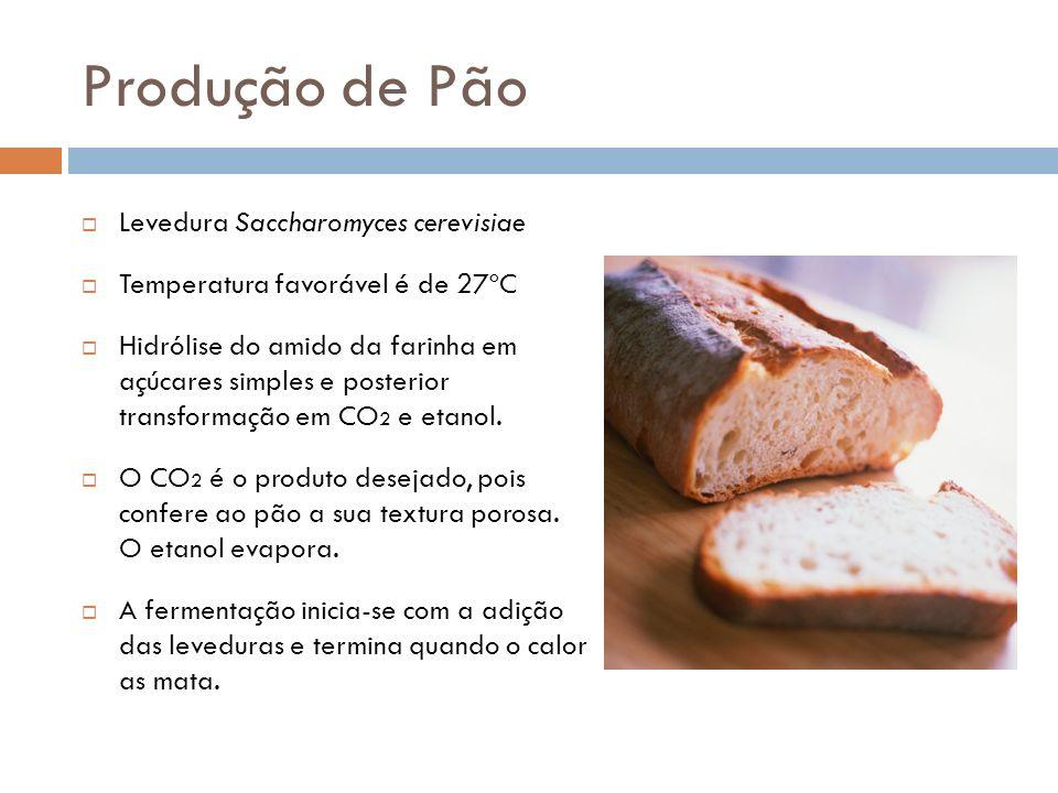 Produção de Pão Levedura Saccharomyces cerevisiae