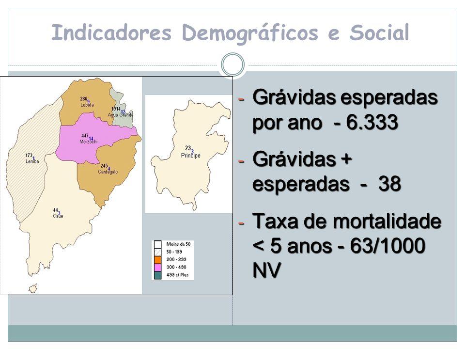 Indicadores Demográficos e Social