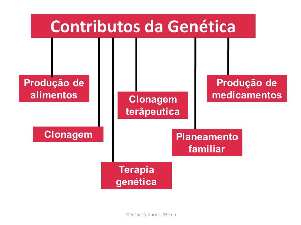 Contributos da Genética