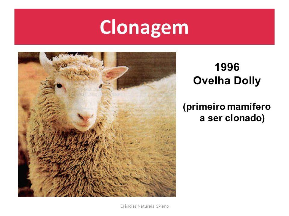 (primeiro mamífero a ser clonado)