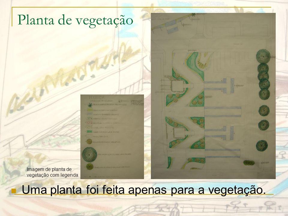 Planta de vegetação Uma planta foi feita apenas para a vegetação.