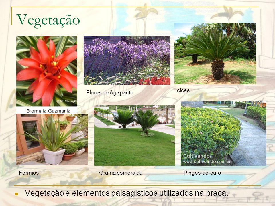 Vegetação Vegetação e elementos paisagisticos utilizados na praça.