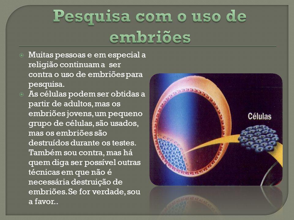 Pesquisa com o uso de embriões