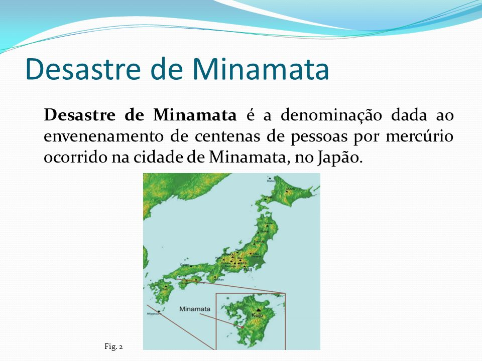 Desastre de Minamata
