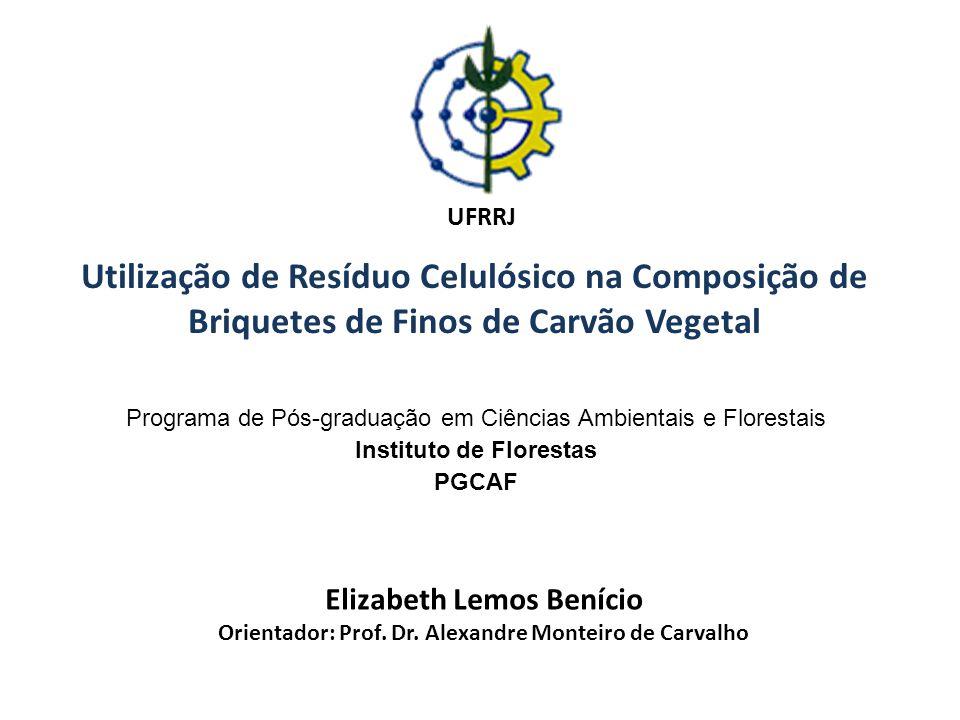 Elizabeth Lemos Benício