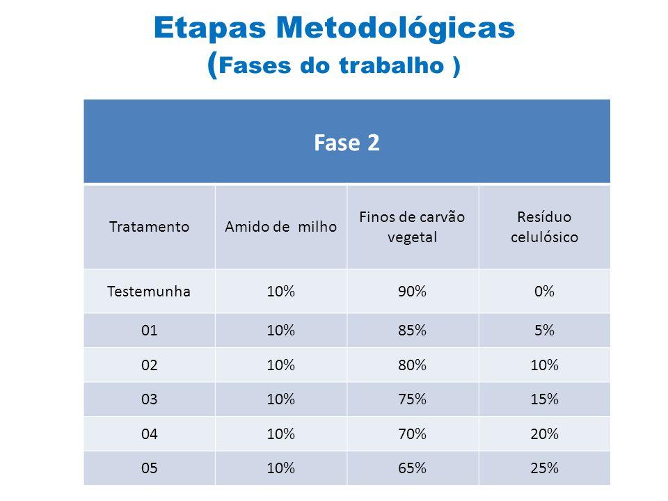 Etapas Metodológicas (Fases do trabalho )
