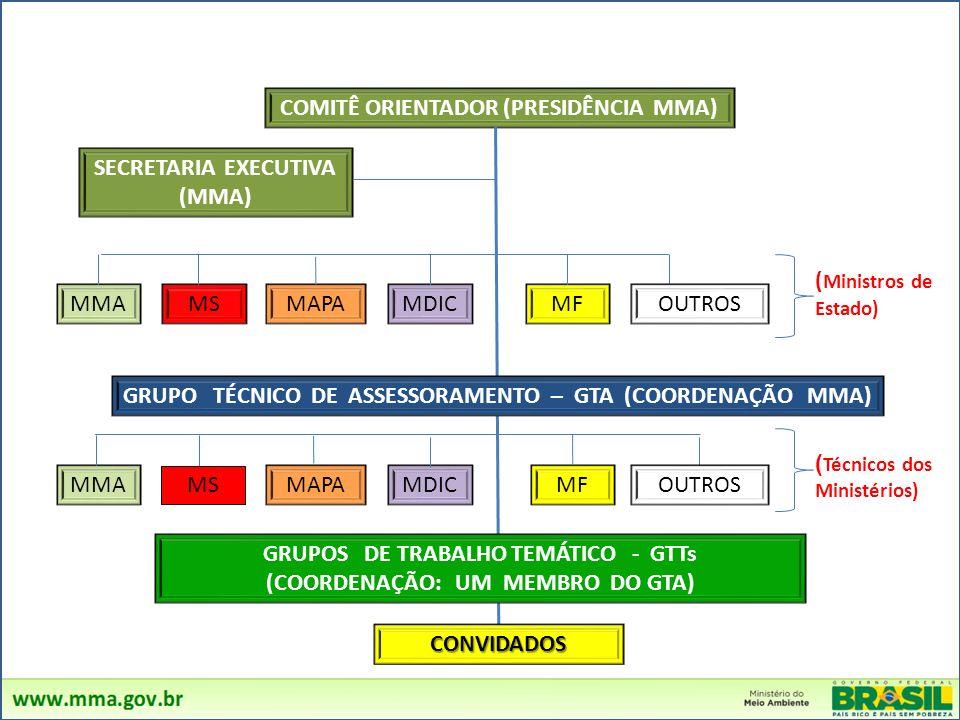 COMITÊ ORIENTADOR (PRESIDÊNCIA MMA)