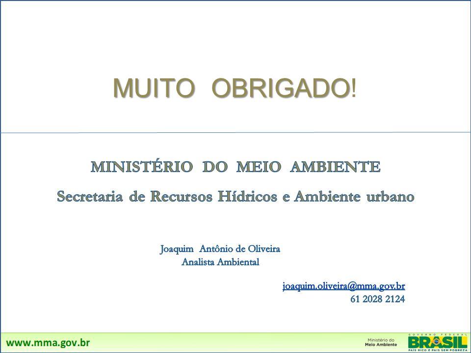 MUITO OBRIGADO! MINISTÉRIO DO MEIO AMBIENTE