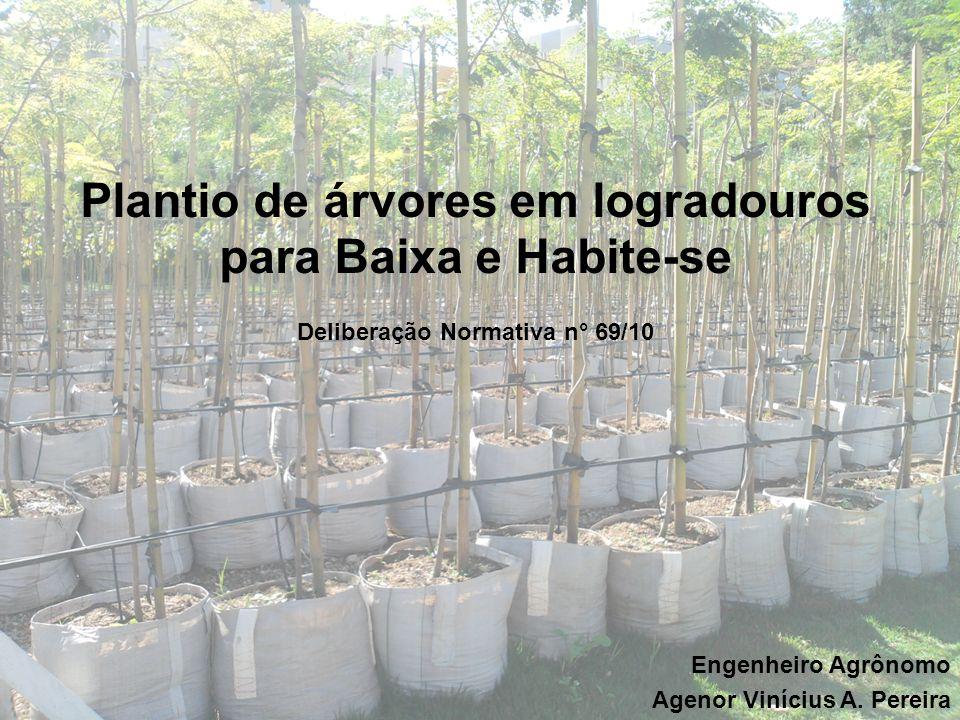 Plantio de árvores em logradouros para Baixa e Habite-se Deliberação Normativa n° 69/10