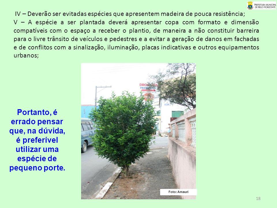 IV – Deverão ser evitadas espécies que apresentem madeira de pouca resistência;
