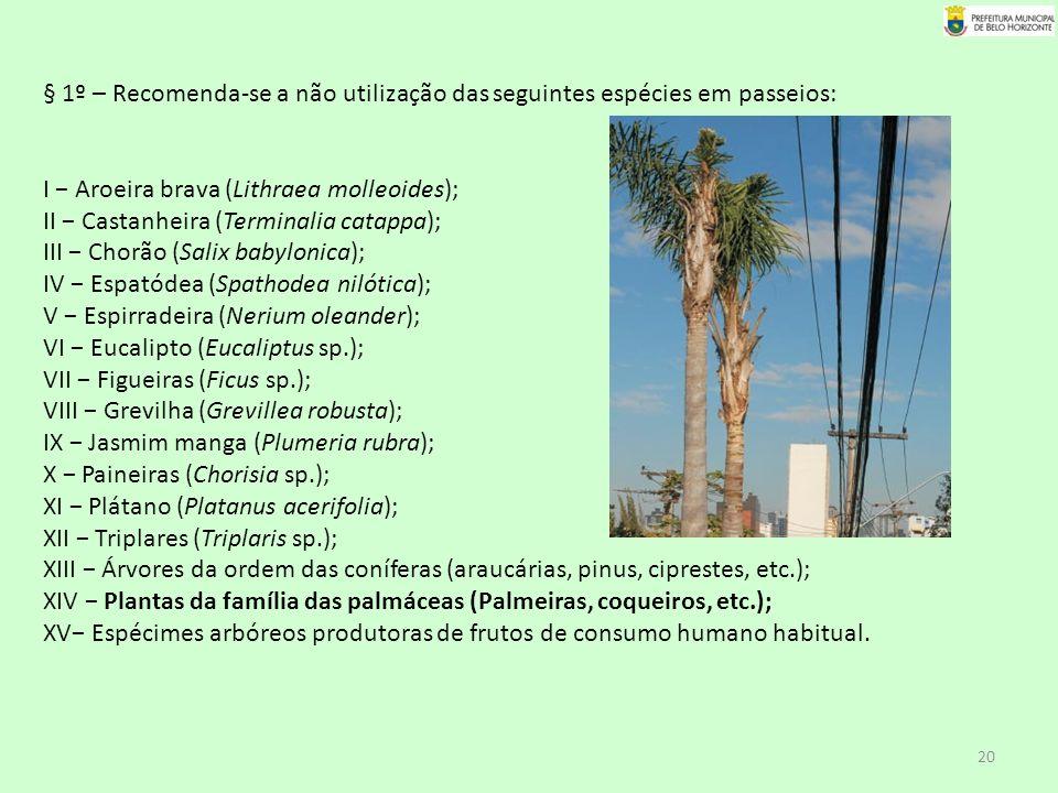 § 1º – Recomenda-se a não utilização das seguintes espécies em passeios: