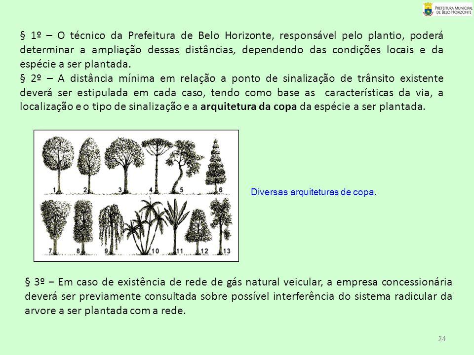 § 1º – O técnico da Prefeitura de Belo Horizonte, responsável pelo plantio, poderá determinar a ampliação dessas distâncias, dependendo das condições locais e da espécie a ser plantada.