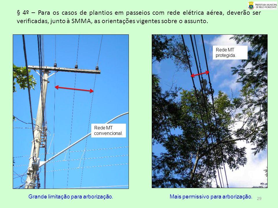 § 4º – Para os casos de plantios em passeios com rede elétrica aérea, deverão ser verificadas, junto à SMMA, as orientações vigentes sobre o assunto.