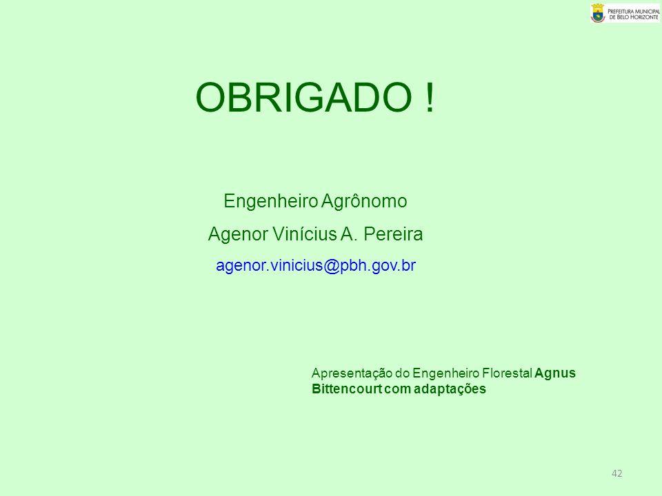 Agenor Vinícius A. Pereira