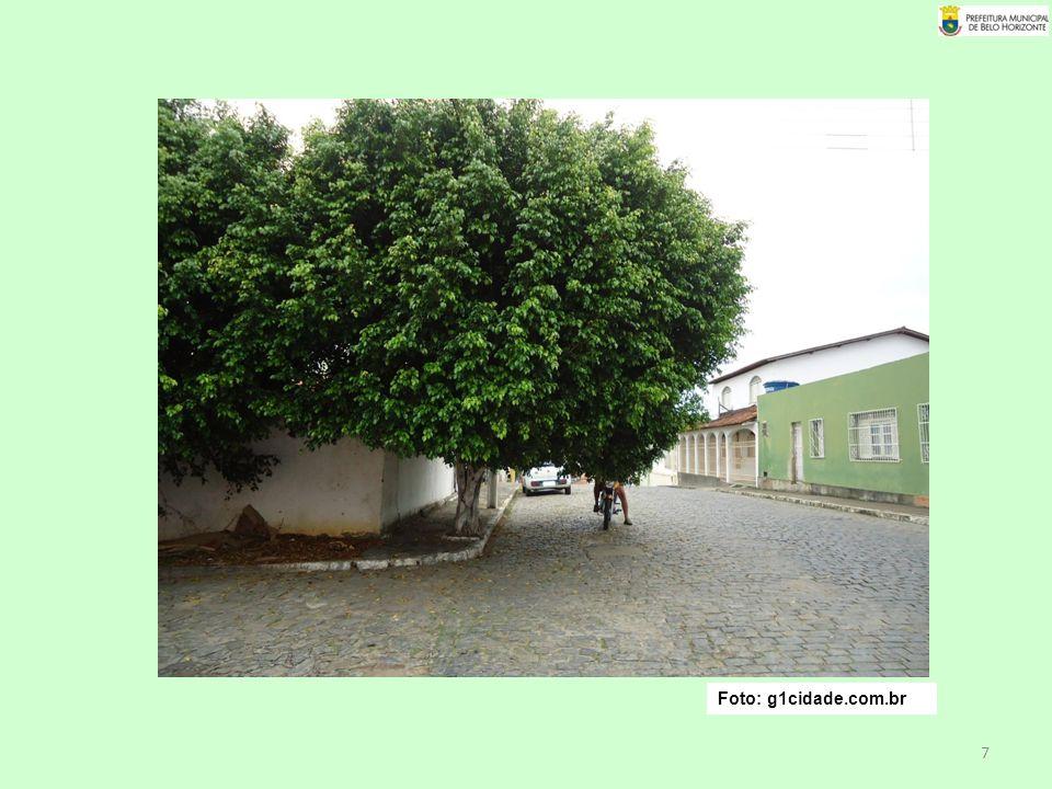 Foto: g1cidade.com.br