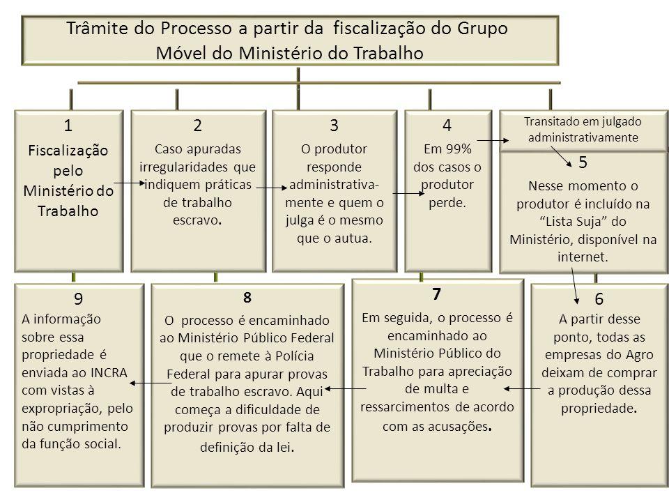Trâmite do Processo a partir da fiscalização do Grupo