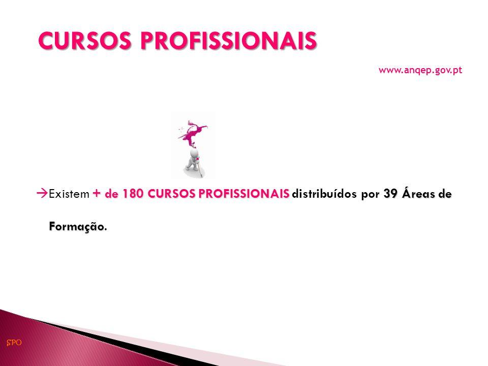 CURSOS PROFISSIONAIS www.anqep.gov.pt
