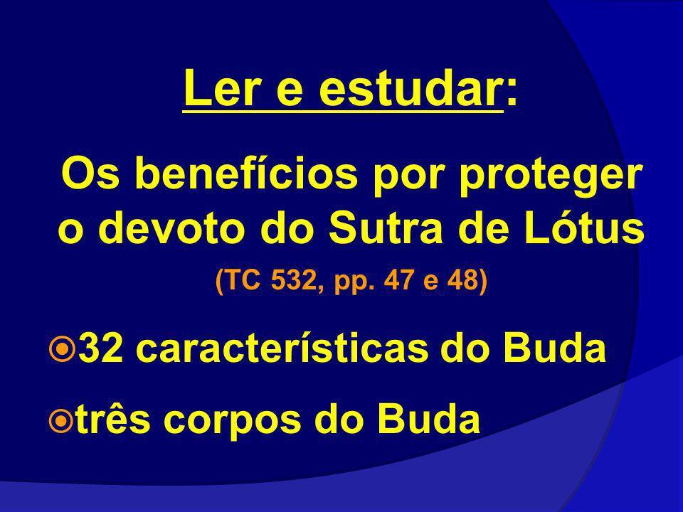 Os benefícios por proteger o devoto do Sutra de Lótus