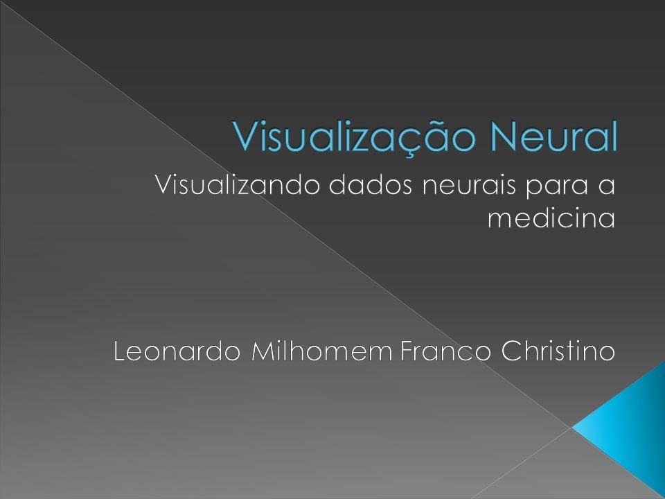 Visualização Neural Visualizando dados neurais para a medicina