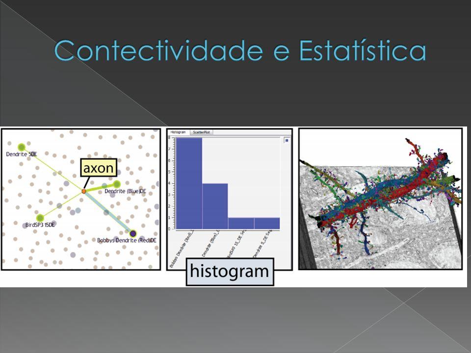 Contectividade e Estatística
