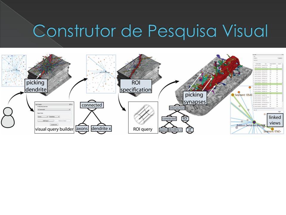 Construtor de Pesquisa Visual
