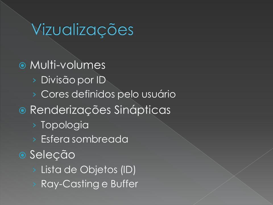 Vizualizações Multi-volumes Renderizações Sinápticas Seleção